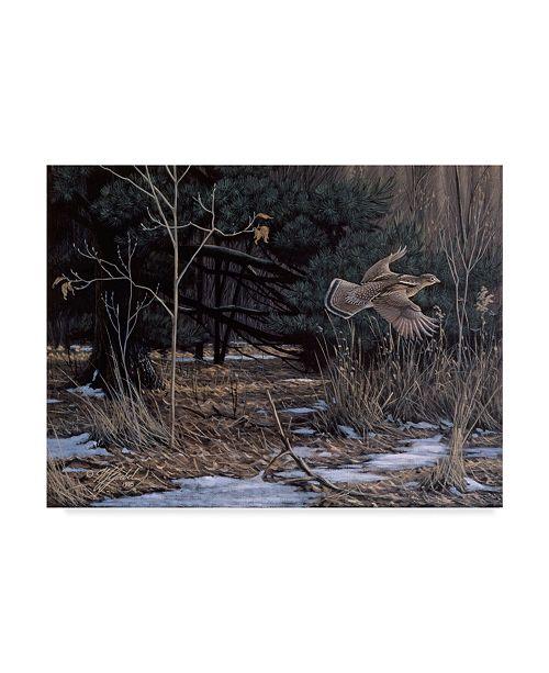 "Trademark Global Wilhelm Goebel 'Grouse On The Wing' Canvas Art - 18"" x 24"""