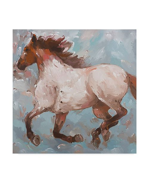 "Trademark Global Hooshang Khorasani 'Roan Runner' Canvas Art - 24"" x 24"""