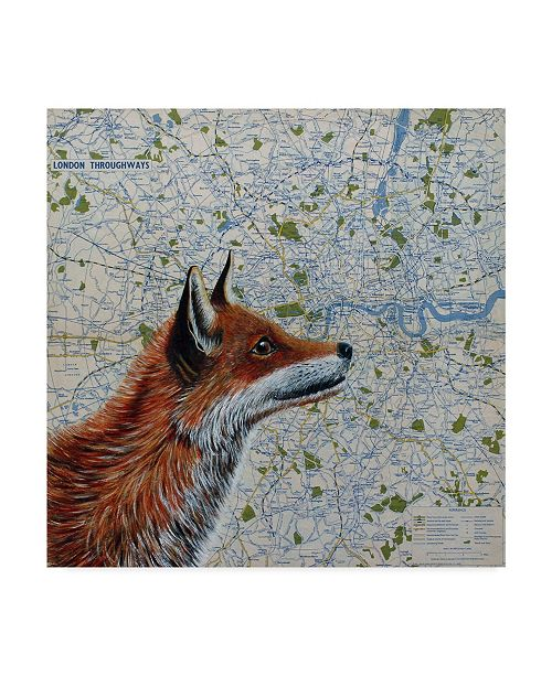 "Trademark Global Jane Wilson 'Mr. Fox' Canvas Art - 14"" x 14"""