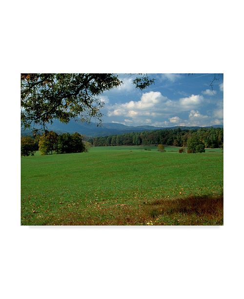 "Trademark Global J.D. Mcfarlan 'Cades Cove Blue Sky' Canvas Art - 19"" x 14"""
