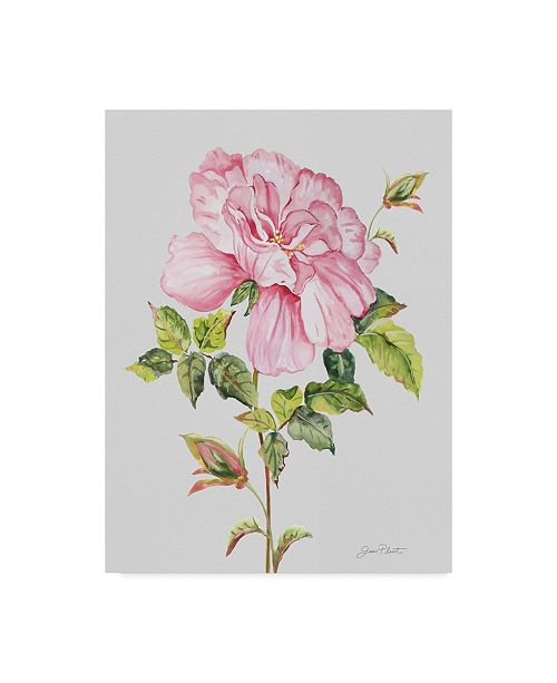"Trademark Global Jean Plout 'Botanicals 2' Canvas Art - 14"" x 19"""