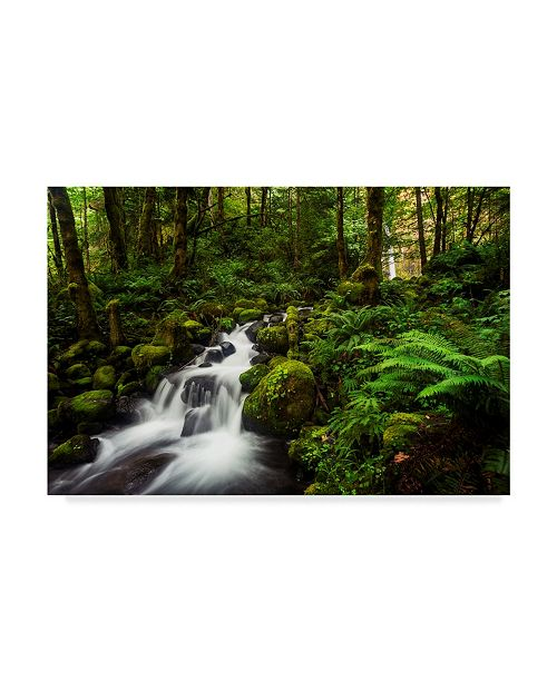 "Trademark Global Natalie Mikaels 'Moment In Nature' Canvas Art - 19"" x 12"""