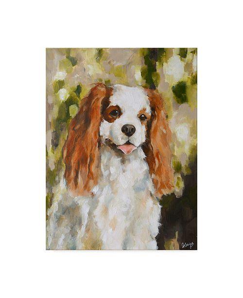 "Trademark Global Solveiga 'Cavalier King Charles Abstract' Canvas Art - 14"" x 19"""
