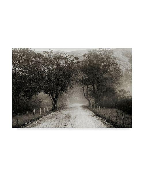 "Trademark Global Nicholas Bell Photography 'Sparks Lane Path' Canvas Art - 19"" x 12"""