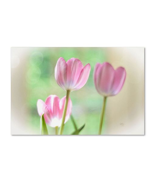 "Trademark Global Lois Bryan 'Three Pink Tulips' Canvas Art - 16"" x 24"""