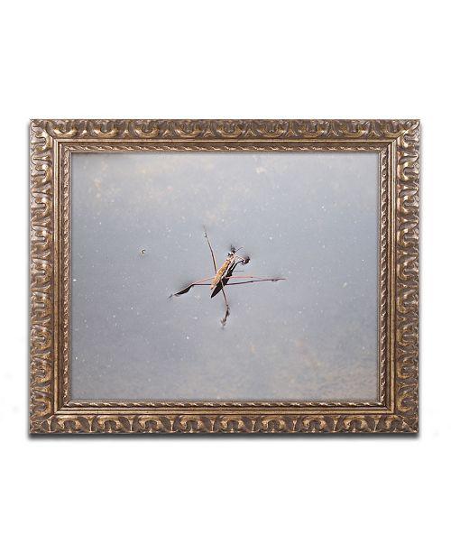 """Trademark Global Monica Mize 'Glide' Ornate Framed Art - 16"""" x 20"""""""