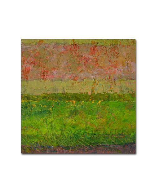 """Trademark Global Michelle Calkins 'Summer Fields' Canvas Art - 35"""" x 35"""""""