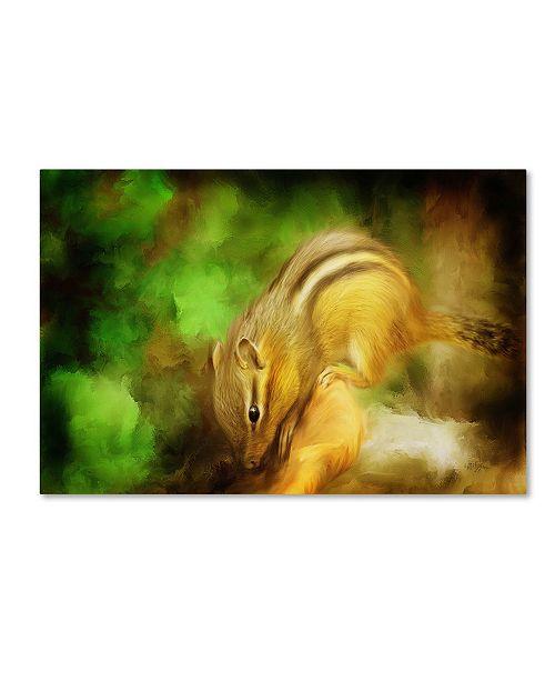 "Trademark Global Lois Bryan 'Going Nuts' Canvas Art - 32"" x 22"""