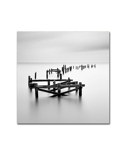 "Trademark Global Rob Cherry 'All That Remains' Canvas Art - 24"" x 24"""