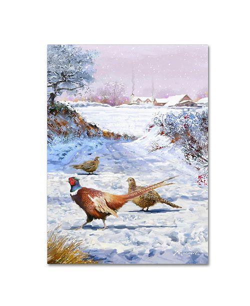 "Trademark Global The Macneil Studio 'Pheasants' Canvas Art - 24"" x 32"""