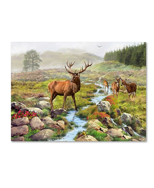 "Trademark Global The Macneil Studio 'Stag' Canvas Art - 35"" x 47"""