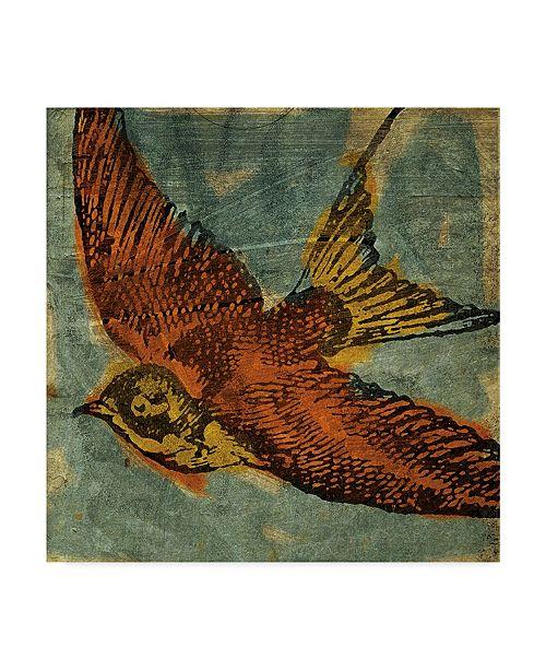 """Trademark Global John W. Golden 'Bird Collage' Canvas Art - 24"""" x 24"""""""