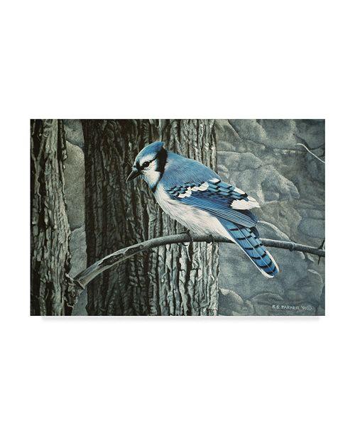 "Trademark Global Ron Parker 'Backyard Jay' Canvas Art - 30"" x 47"""