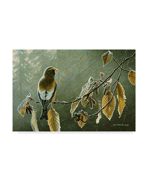 "Trademark Global Ron Parker 'Frosty Alder' Canvas Art - 22"" x 32"""