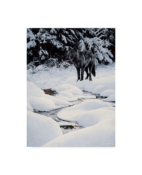 "Trademark Global Ron Parker 'Black Wolf And Embers' Canvas Art - 35"" x 47"""