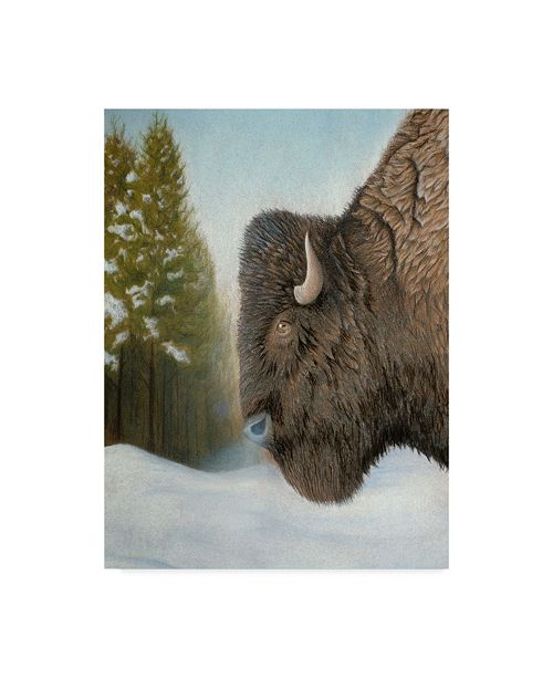 "Trademark Global Rusty Frentner 'Lone Buffalo' Canvas Art - 24"" x 32"""