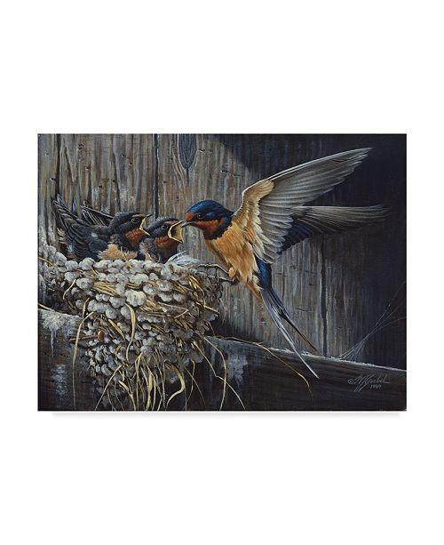 "Trademark Global Wilhelm Goebel 'Country Barn Swallows' Canvas Art - 24"" x 32"""