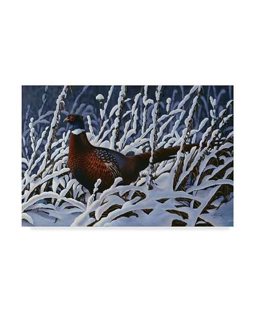 "Trademark Global Wilhelm Goebel 'Ring Neck Pheasant' Canvas Art - 30"" x 47"""