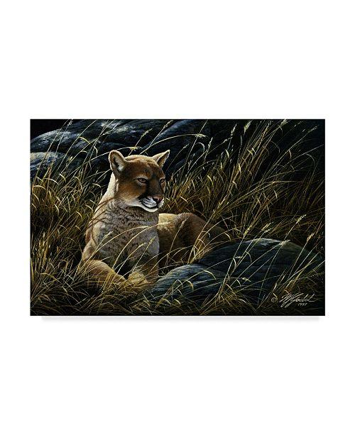 "Trademark Global Wilhelm Goebel 'Cougar In The Grass' Canvas Art - 22"" x 32"""
