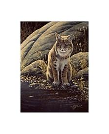 "Wilhelm Goebel 'Backlight Bobcat' Canvas Art - 35"" x 47"""