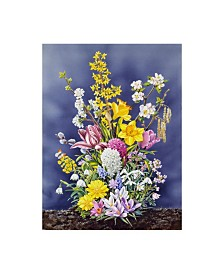 """Harro Maass 'Spring Flowers Clouds' Canvas Art - 35"""" x 47"""""""