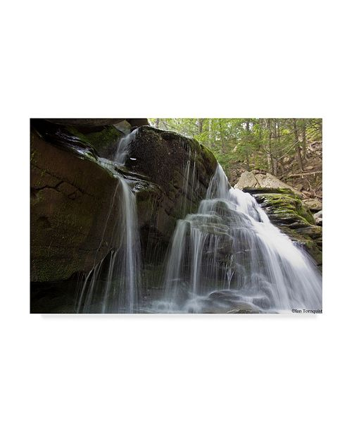 "Trademark Global Ian Tornquist 'Silked Falls' Canvas Art - 32"" x 22"""