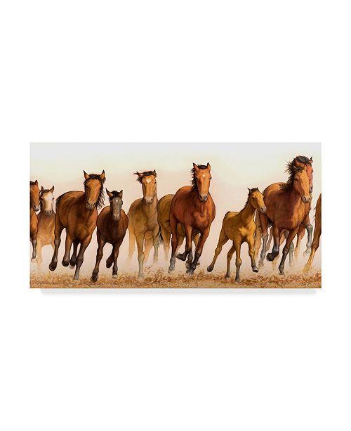 "Trademark Global James W. Johnson 'Running Horses Group' Canvas Art - 47"" x 24"""