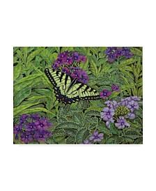 """Jan Benz 'Serendipity Butterfly' Canvas Art - 47"""" x 35"""""""