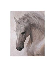"""Lee Mitchelson 'Free Spirit White Horse' Canvas Art - 35"""" x 47"""""""