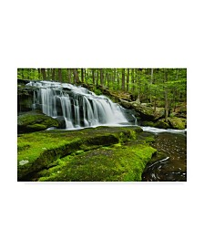 """Michael Blanchette Photography 'Spring At Tucker Brook' Canvas Art - 47"""" x 30"""""""