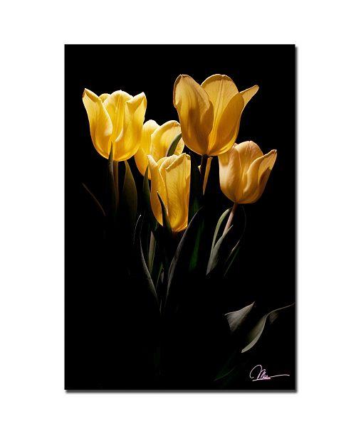 """Trademark Global Martha Guerra 'Yellow Blooms III' Canvas Art - 24"""" x 16"""""""