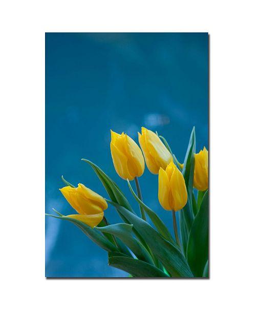 "Trademark Global Martha Guerra 'Yellow Tulip Bouquet II' Canvas Art - 24"" x 16"""