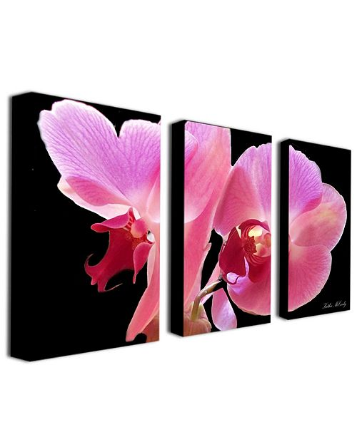 "Trademark Global Kathie McCurdy 'Orchid' Canvas Art Set - 24"" x 14"""