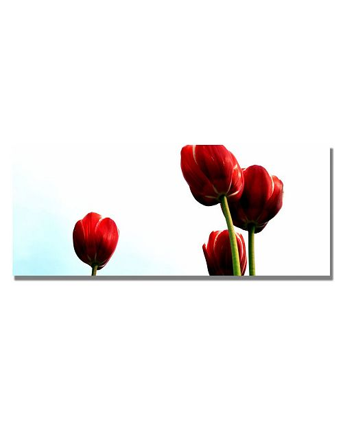 """Trademark Global Michelle Calkins 'Four Red Tulips' Canvas Art - 32"""" x 12"""""""