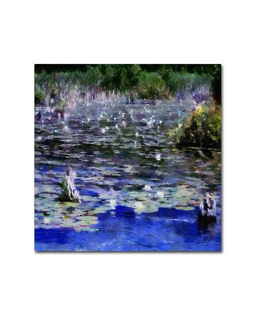 "Trademark Global Michelle Calkins 'Water Lilies in the River' Canvas Art - 24"" x 24"""
