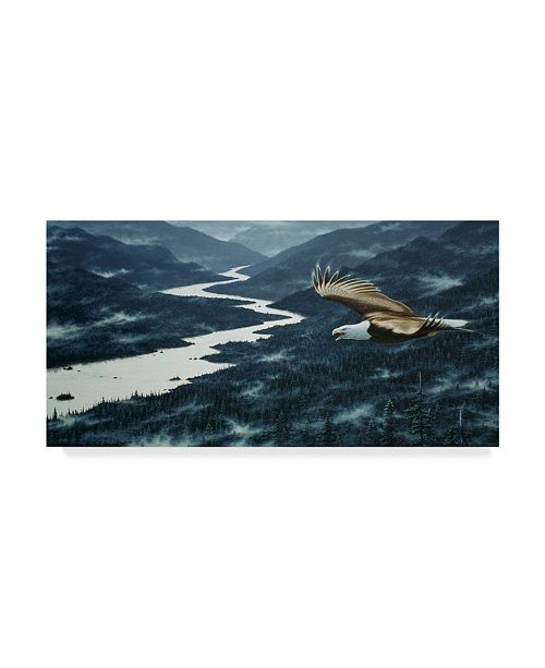 """Trademark Global Jeff Tift 'On The Silent Wings Of Freedom' Canvas Art - 10"""" x 19"""""""