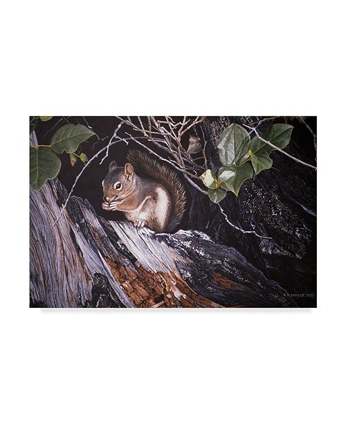 """Trademark Global Ron Parker 'Red Squirrel In Salac' Canvas Art - 12"""" x 19"""""""