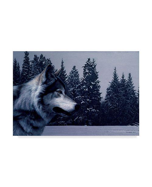 "Trademark Global Ron Parker 'Gray Wolf Portrait' Canvas Art - 12"" x 19"""