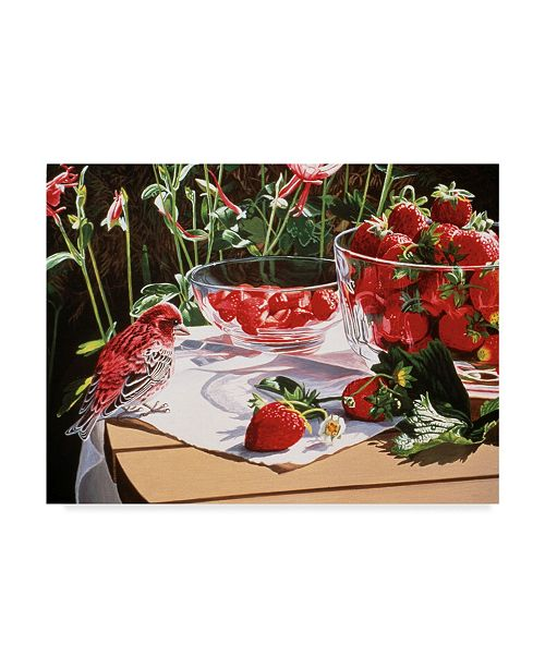 "Trademark Global Ron Parker 'Strawberries' Canvas Art - 14"" x 19"""
