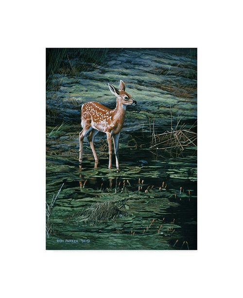 "Trademark Global Ron Parker 'Ponds Edge' Canvas Art - 14"" x 19"""