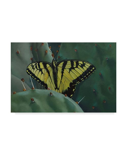"Trademark Global Rusty Frentner 'Butterfly Cactus' Canvas Art - 12"" x 19"""