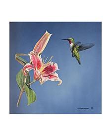 "Rusty Frentner 'Hummingbird And Lily' Canvas Art - 14"" x 14"""