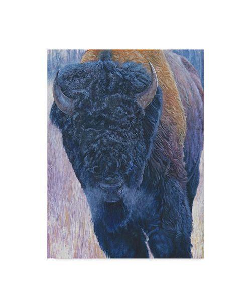 "Trademark Global Rusty Frentner 'Bull' Canvas Art - 14"" x 19"""