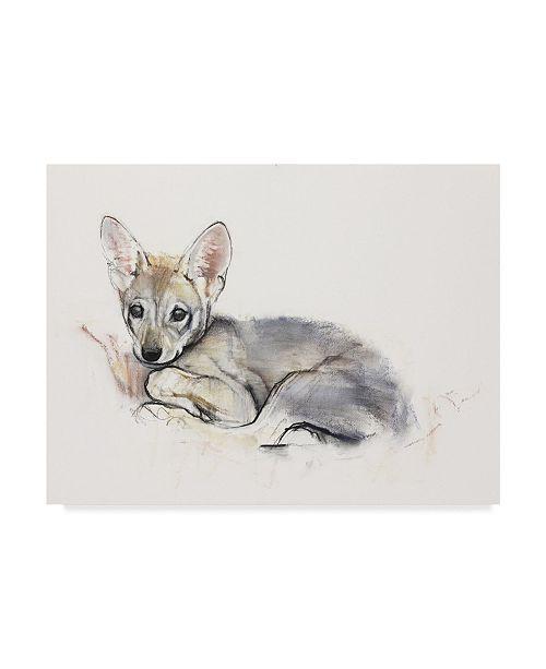 "Trademark Global Mark Adlington 'Curled Wolf Pup' Canvas Art - 14"" x 19"""
