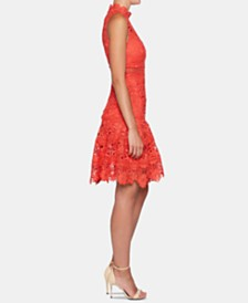 Bardot Elise Lace Fit & Flare Dress
