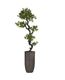 "Laura Ashley 73.25"" Tall Yacca Tree Lifelike Faux in Resin Planter"