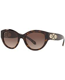 BVLGARI Sunglasses, BV8221B 53