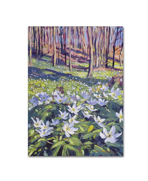 "Trademark Global David Lloyd Glover 'Anemones in the Meadow' Canvas Art - 18"" x 24"""