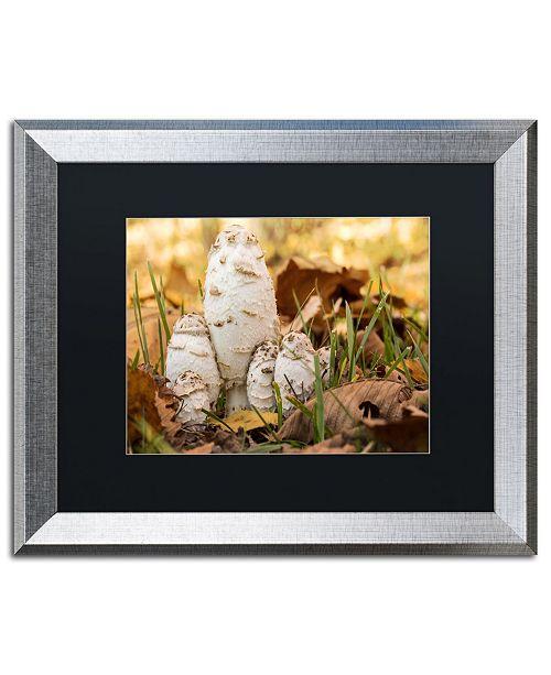 """Trademark Global Jason Shaffer 'Autumn Mushrooms' Matted Framed Art - 20"""" x 16"""""""