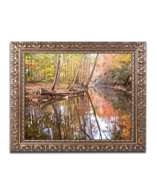 """Trademark Global Jason Shaffer 'Beaver Creek 1' Ornate Framed Art - 14"""" x 11"""""""